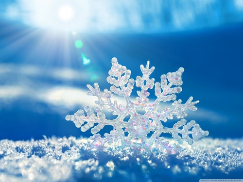 cold, december, snow and snowflake