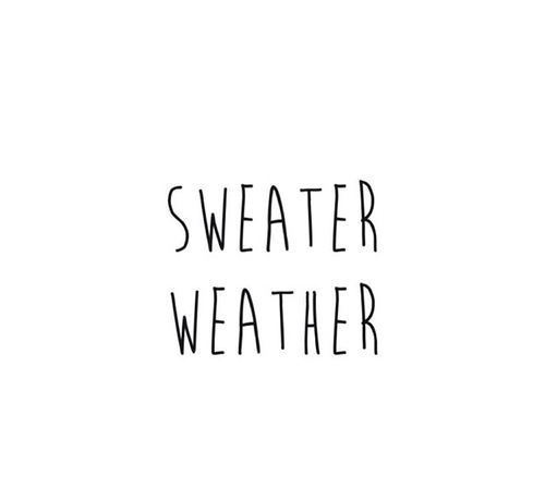 Quotes About Cozy Sweaters