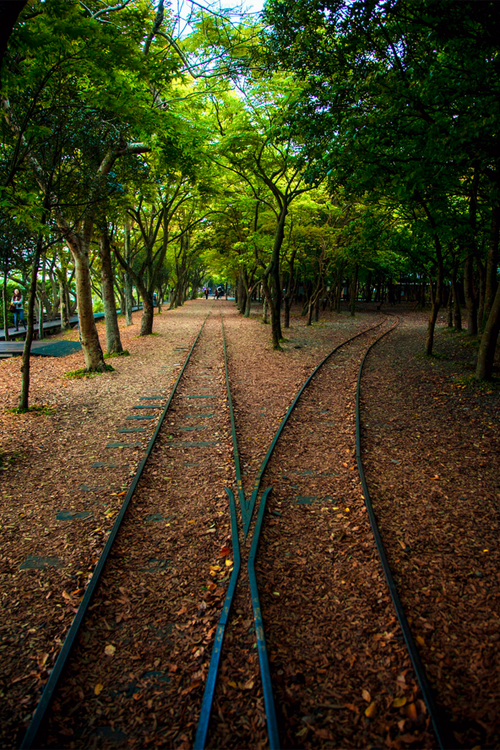 landscape, nature and railway