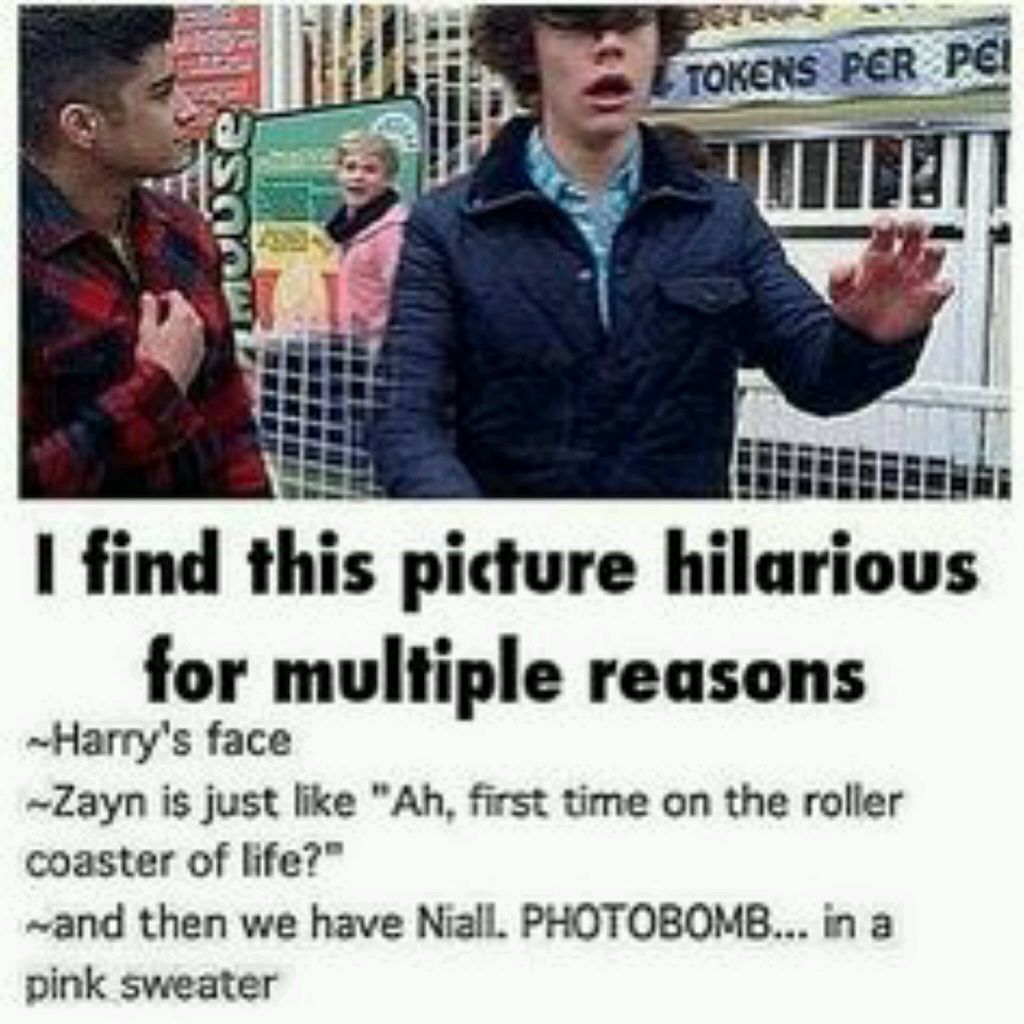 awesome, funny, harry styles and niall horan
