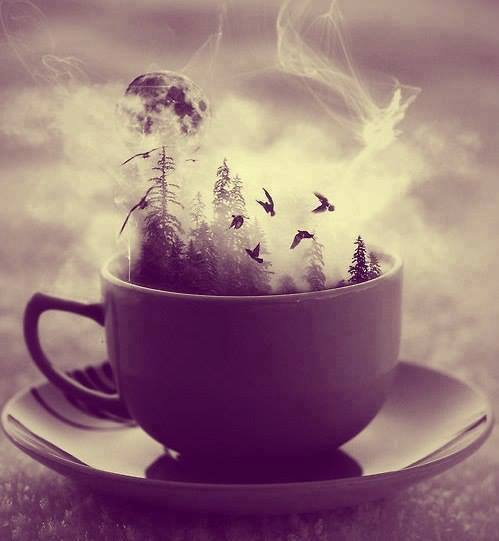 amazing, birds, coffee, cool, cup, dream, inspiration, moon, smoke ...