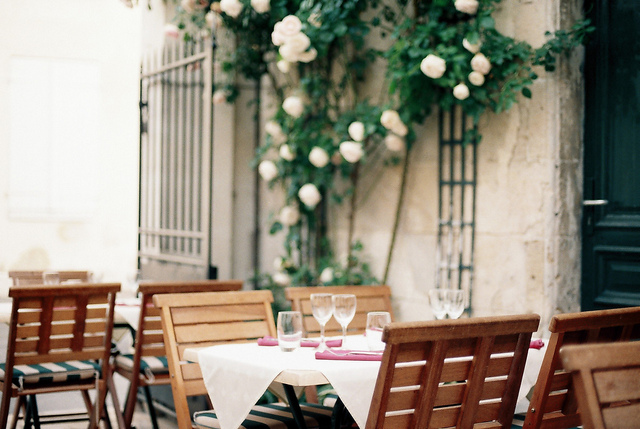 nature, garden, food and romantic