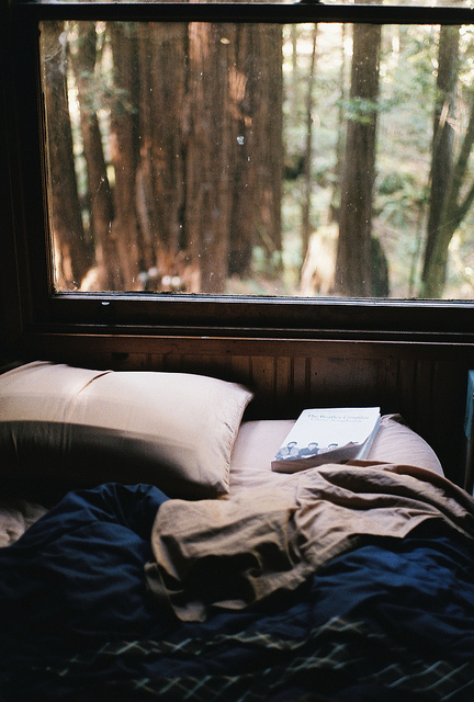 bed, bedroom, book, books, cozy, forest, hipster, indie, nature, room, sy, vintage, winter
