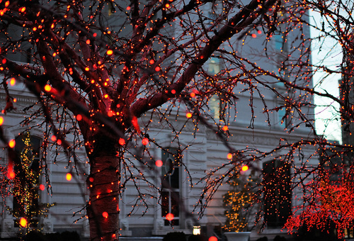 christmas, decoration, lights and red