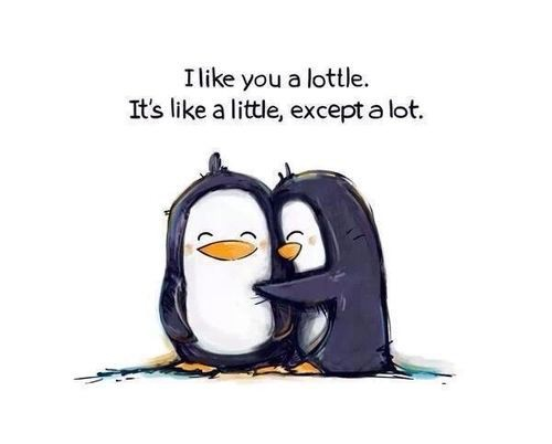 background, black-and-white, cute, love, penguins, wallpaper