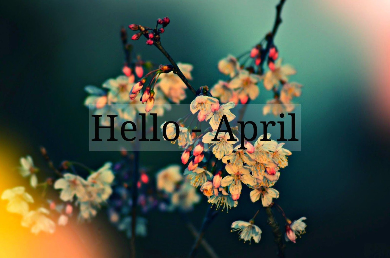 april, goodbye, hello and march