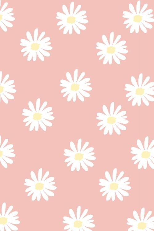 cute daisy pastel pink wallpaper image 2704356 by