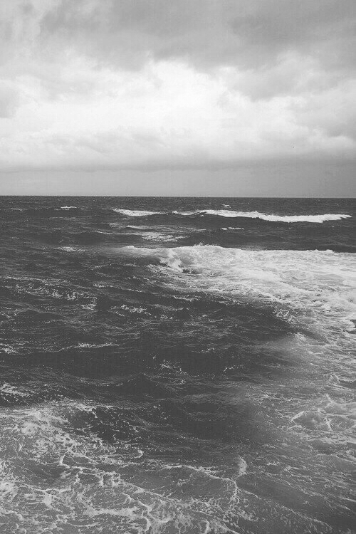 beautiful, black and white, nature, ocean, photography ...