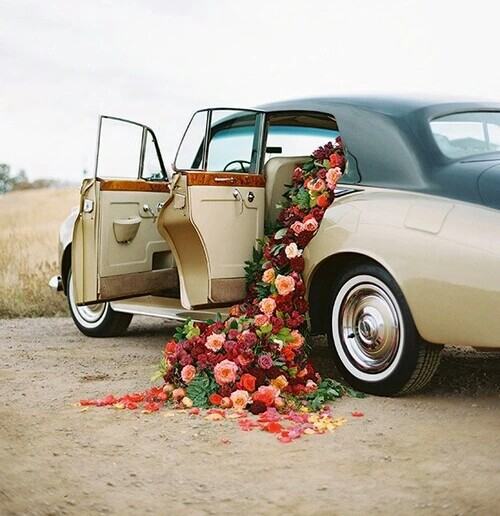 awesome, dreamy, love, old car, roses, open doors