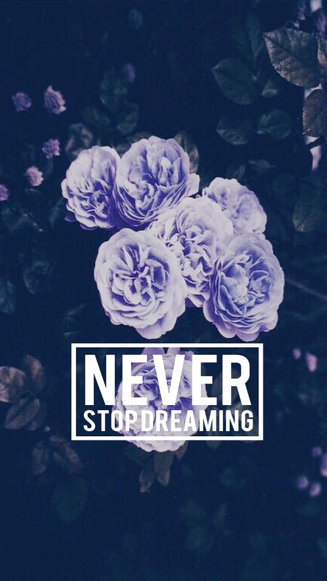 Neverstopdreaming Image 2859596 By Lauralai On Favimcom