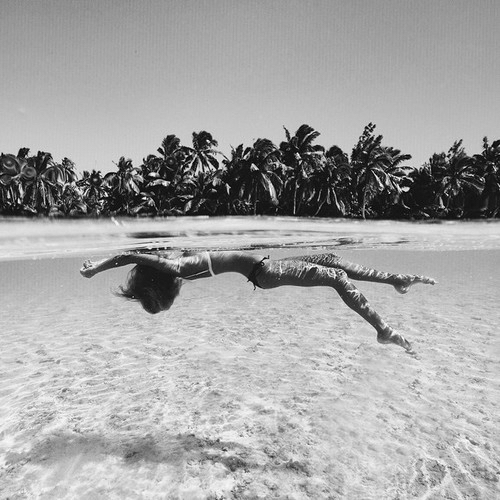 and, beach, black, clear, dive, girl, palm, palmtrees, sand, summer, sun, swim, tree, trees, water, white