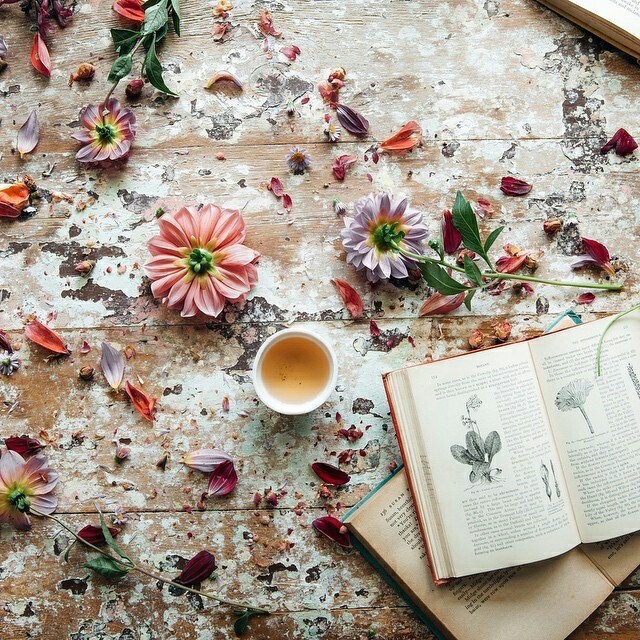 arrangement, botany, cup of tea and flowers