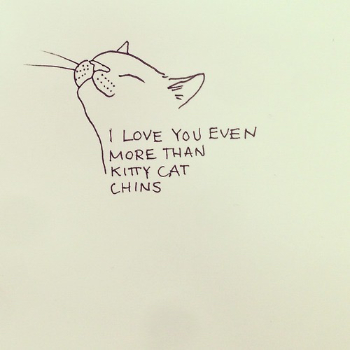 adorable artsy cat cute drawing kitty pretty quotes