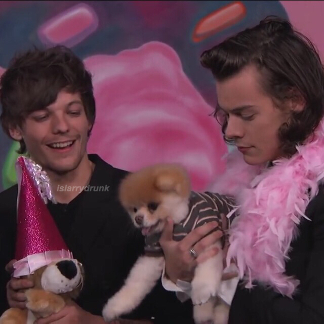 cute, dog, icon and larry is real