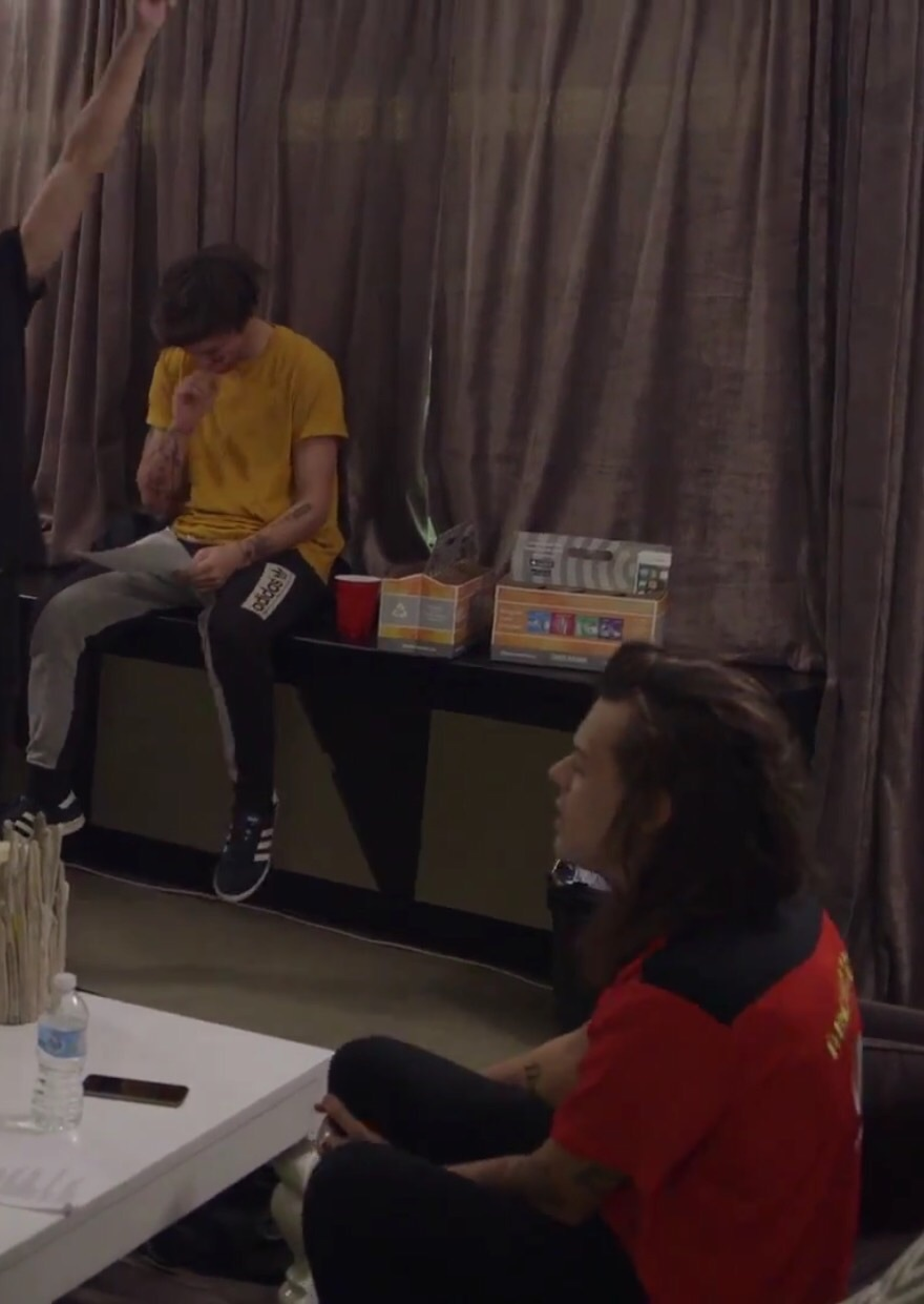 ha, harry and louis, larry and larry stylinson