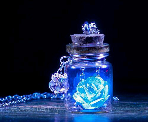 beautiful, blue rose, bottle, flower, glowing, medal, rose, wallpaper