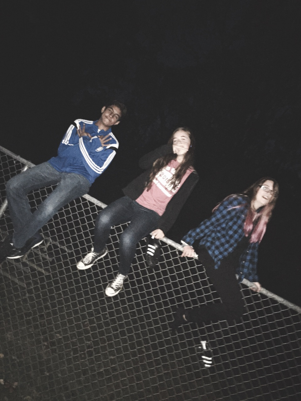 aesthetic, best friends, blog, dark, explore, fence, flannel, friends, girl, grunge, hipster, indie, moon, night, pale, photography, plaid, punk, reckless, shoes, style, teenager, teens, tumblr, vintage, acidic