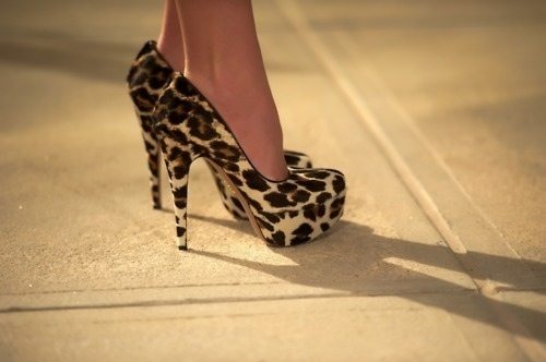 art, beautiful, couple, cute, fashion, girl, hair, heels, leopard, photography, pretty, shoe