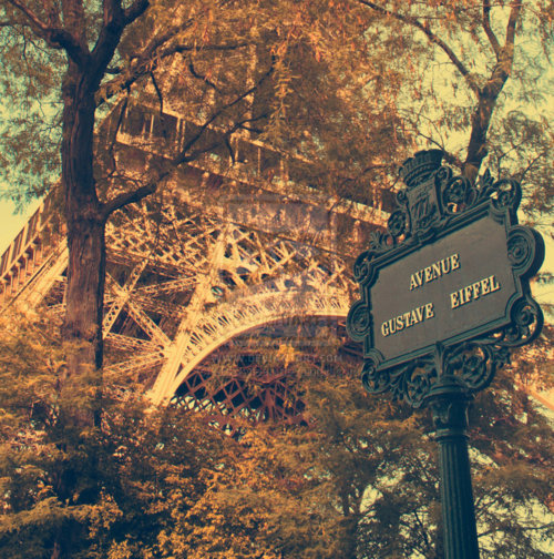 eiffel tower, paris, france, photography, love - image ...