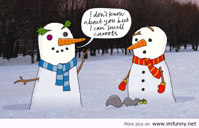 Funny Holiday Images