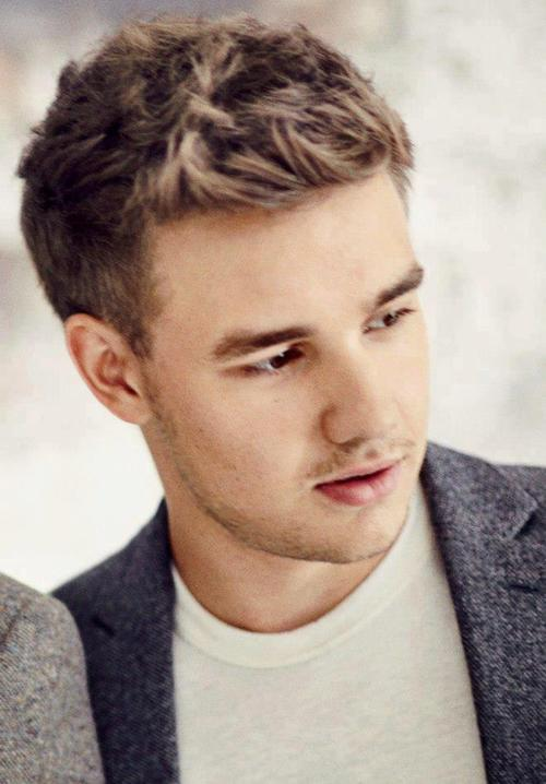 Onedirection One Direction Liam Payne Liampayne Image