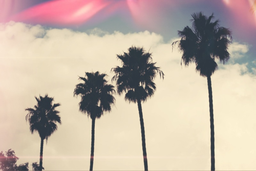 about, all, beach and california