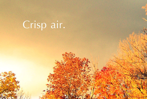 air, autumn, autumn love, crisp