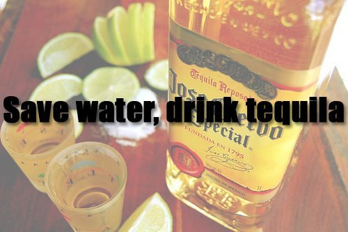 alcohol, camera, drink, drunk, free, fun, life, love, party, photography, sad love, tequila