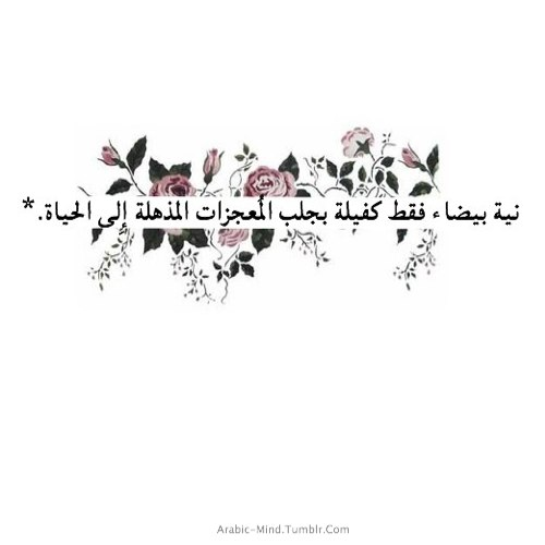 arabic quotes about life quotesgram