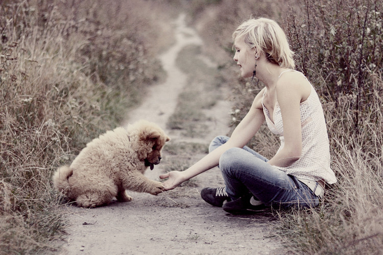 cute, dog, friendship, girl